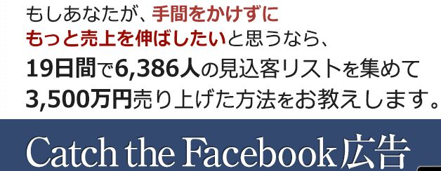 Catch the Facebook広告 特典 レビュー 情報商材 激安 特典